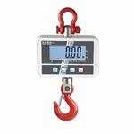 Crane scale HCD 150/300 kg, 50100 g